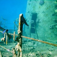 Erste Impression direkt nach dem Abstieg zum Wrack in ca 10 Metern Tiefe, September 2002