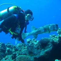 Martin mit Igelfisch, Mai 2007