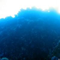 Blick nach oben, März 2005