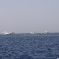 Viele Tauchboote am Shark & Yolanda Reef, Mai 2007