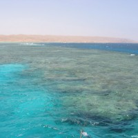 Überblick über das komplette Riff, Mai 2004