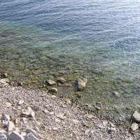 Sehr niedriger Wasserstand im Frühjahr, März 2006