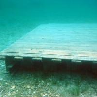 Im-See-verteilt-gibt-es-mehrere-Übungsplattformen-Mai-2004
