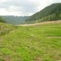 Blick von der Begrenzungsmauer Richtung Zulauf, August 2002