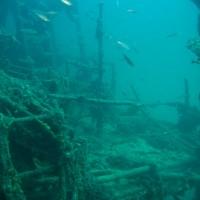 Backbord, September 2005