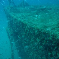 Der Bug von Backbord aus, September 2005