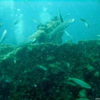Das Bordgeschütz mittschiffs, Juni 2003