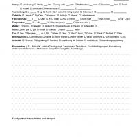 SSI Dive Log - 1 Tauchgang pro Seite v2
