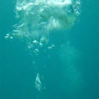 malediven2002_101