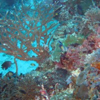 philippinen2004_0436