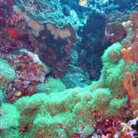 philippinen2004_0580