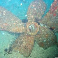 Schraube der MV Alma Jane Express, Oktober 2003