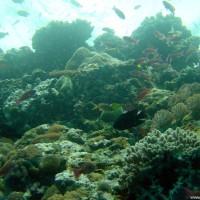 philippinen2003_173